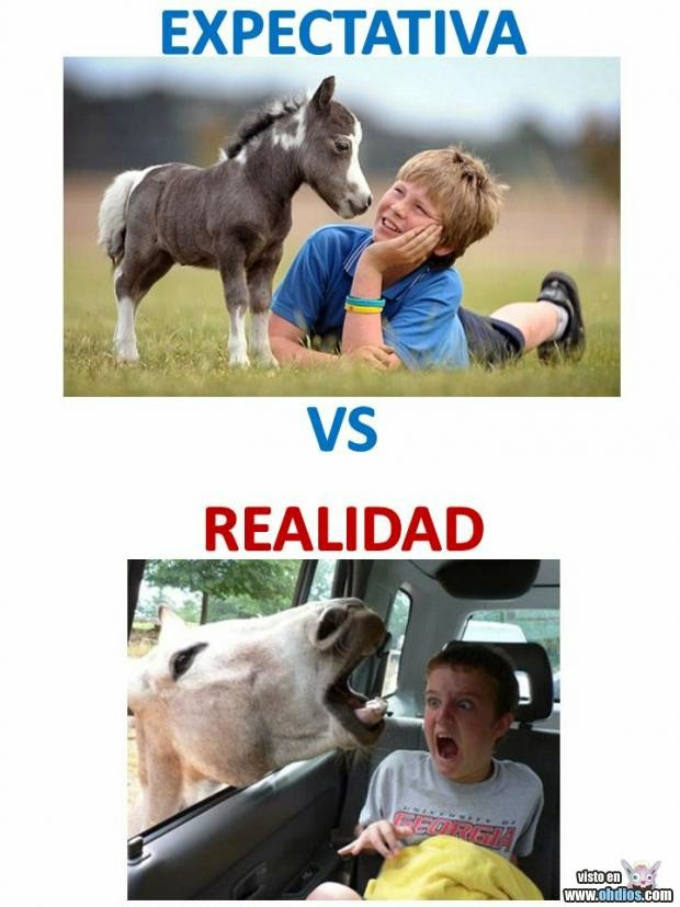 Expectativa vs Realidad: animales
