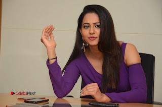 Actress Rakul Preet Singh Latest Stills in Beautiful Long Dress  0227.JPG