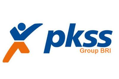 Lowongan Kerja PT. PKSS Pekanbaru Oktober 2018
