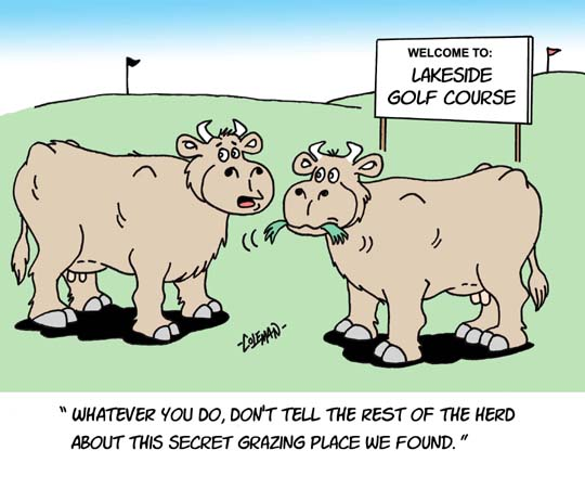 Funny Animal Cartoons Ron Coleman