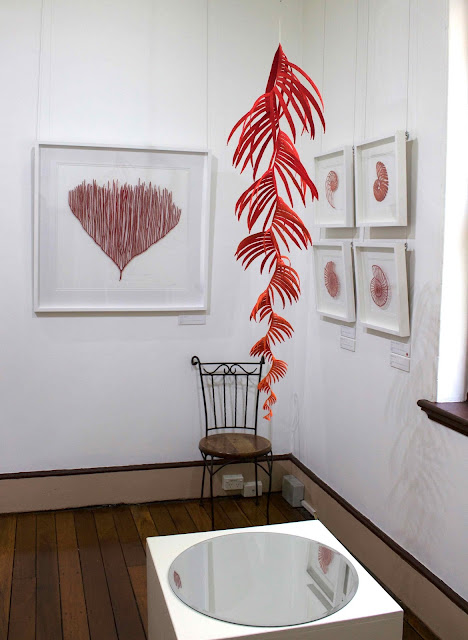 Exhibition Shell Near Me : The artwork of meredith woolnough