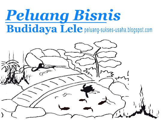 Peluang Bisnis Budidaya Lele