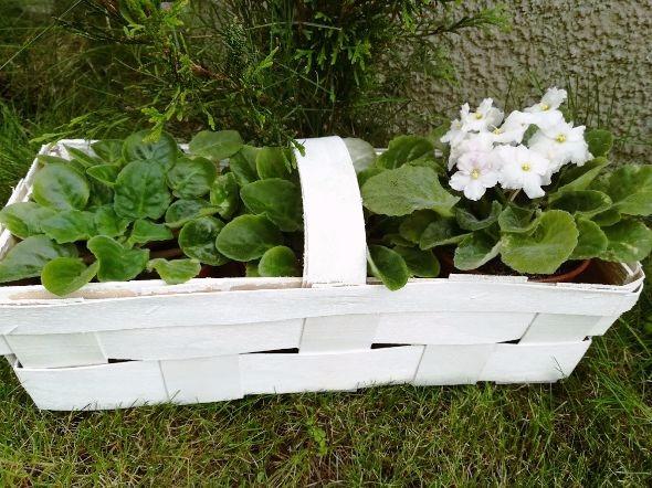doniczka diy, pomysł na doniczki ogrodowe, doniczka ogrodowa diy, jak zrobić doniczkę, pomył na tanią doniczkę.