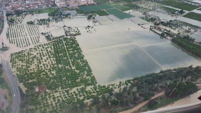 Elena Cebrián: 'Nuestra primera preocupación ahora mismo es el impacto del temporal en el sector agrario'