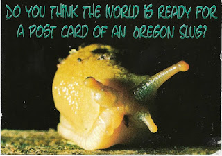 Oregon slug