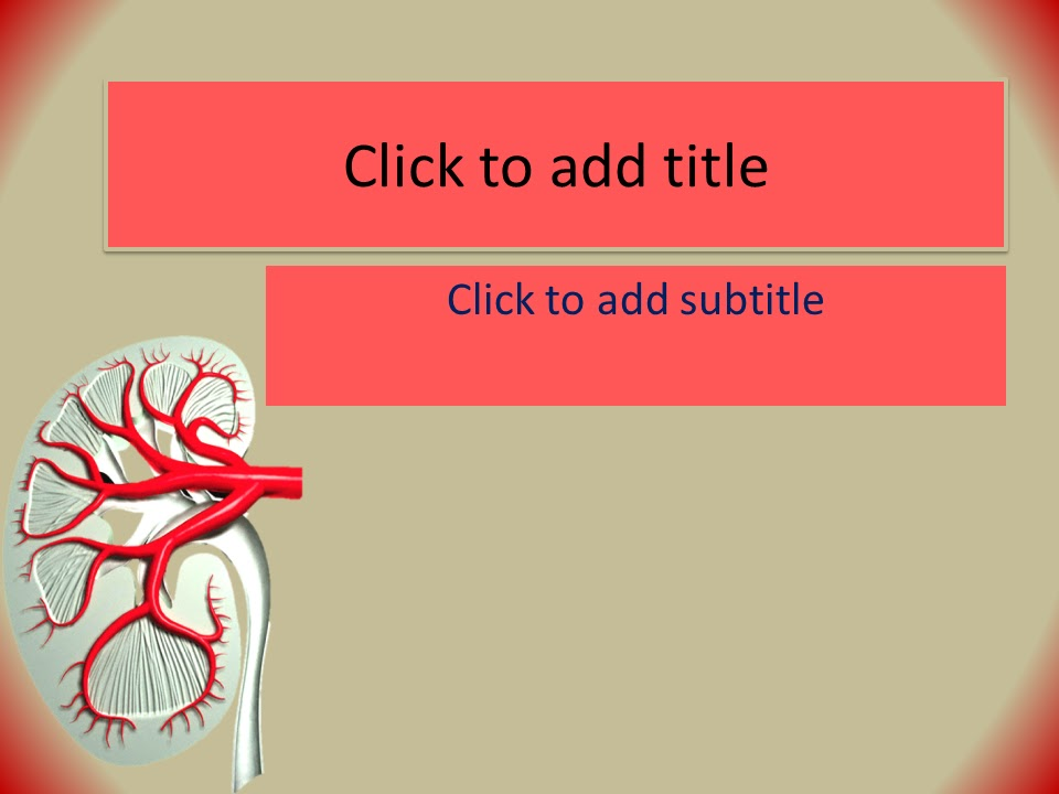 Kidney PowerPoint Template - Free Download ~ Free Medical PowerPoint