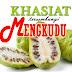 Khasiat Mengkudu