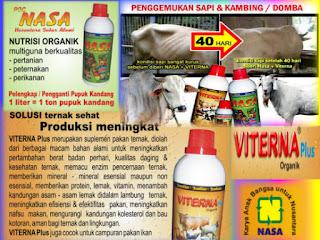 Jual Viterna Plus Nasa Di SAWAHAN NGANJUK 082334020868