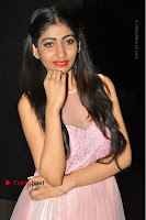 Actress Nidhisha Reddy Pos in Beautiful Pink Dress at Virus Telugu Movie Audio Launch .COM 0022.JPG