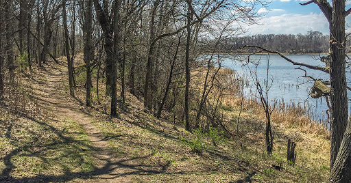 Along the Storrs Lake Segment of the Ice Age Trail
