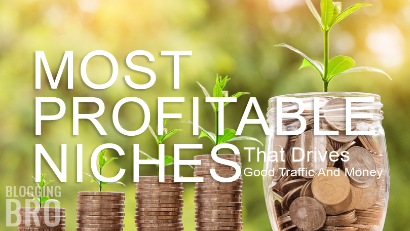 most-profitable-blog-niches-great-traffic-and-money