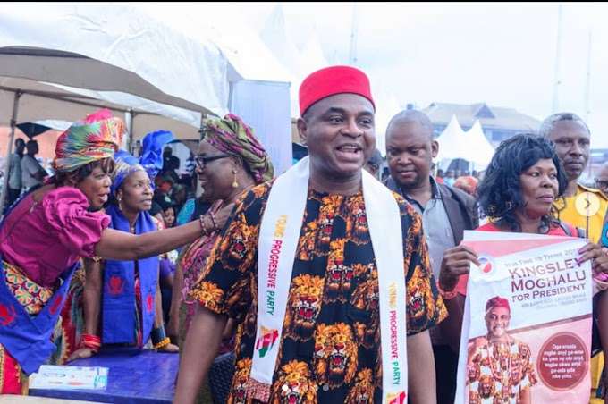 I am pressing ahead with my plan to contest the 2019 presidential election - says Presidential Kingsley Moghalu