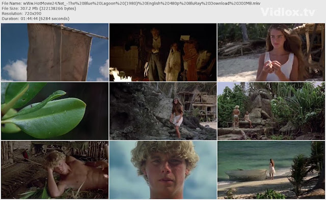 [18+] The Blue Lagoon 1980 480p BluRay 300MB Screenshot