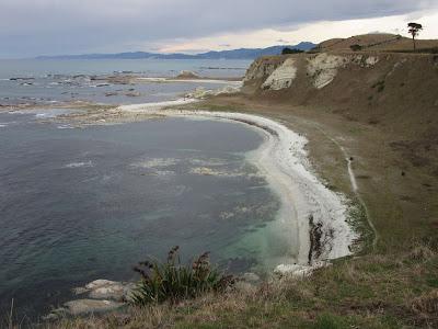 Península de Kaikoura. Nueva Zelanda