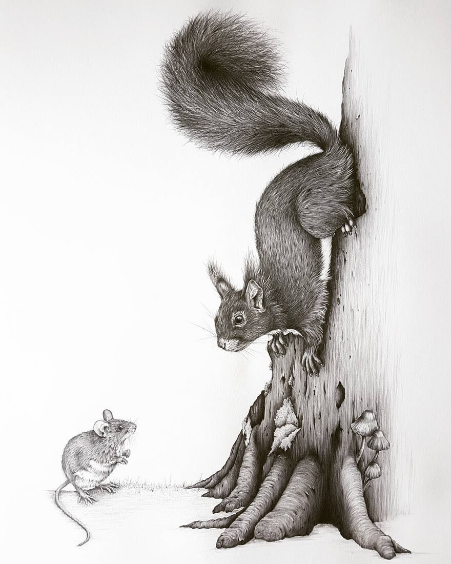 01-Squirrel-and-Mouse-Kerry-Jane-Detailed-Black-and-White-Wildlife-Drawings-www-designstack-co