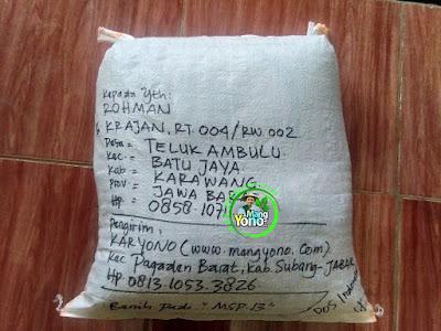 Benih Pesanan   ROHMAN Karawang, Jabar  (Sesudah Packing)