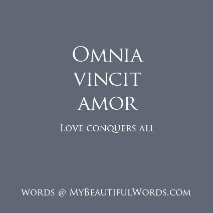 my beautiful words omnia vincit amor. Black Bedroom Furniture Sets. Home Design Ideas