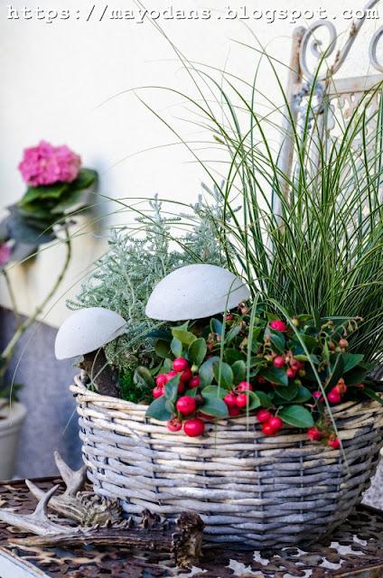 Dekoration für Herbstpflanzen