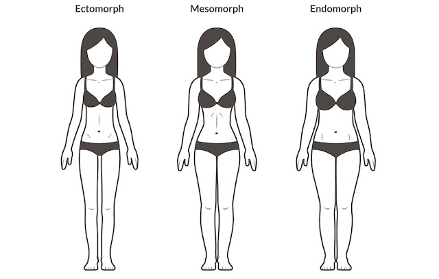 body types 1000 - Understanding Body Types to Lose Fat and Tone