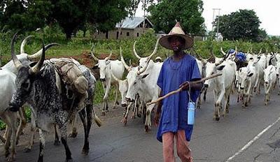 Fulani herdsmen  ambushed ,  killed two soldiers in Benue