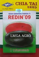 buah semangka, semangka inul redin 09, jual murah benih, lmga agro