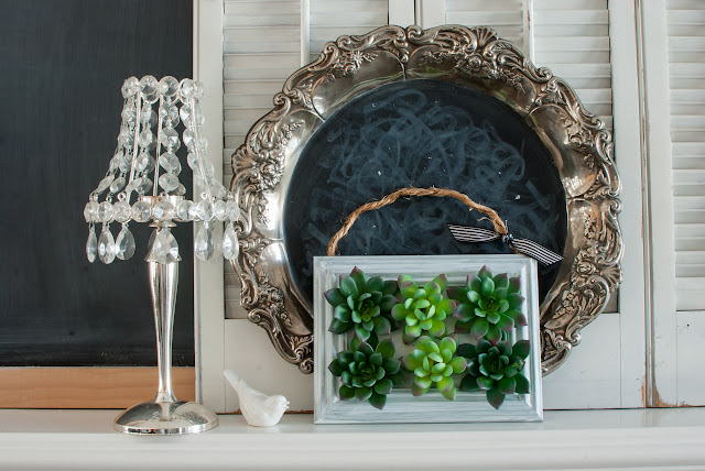Framed Succulents with Chalkboard Vignette