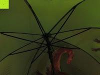 """innen: VON LILIENFELD grüner Regenschirm mit Tiermotiv """"Schattenfrosch"""""""