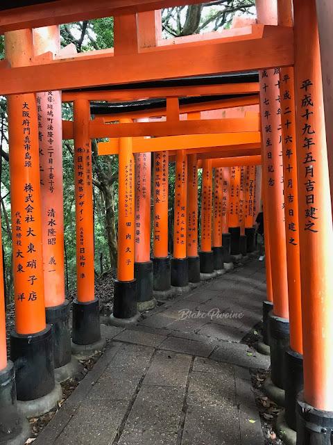 torii-kyoto