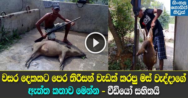 Ada Derana News about Animal Killing People in Kandy
