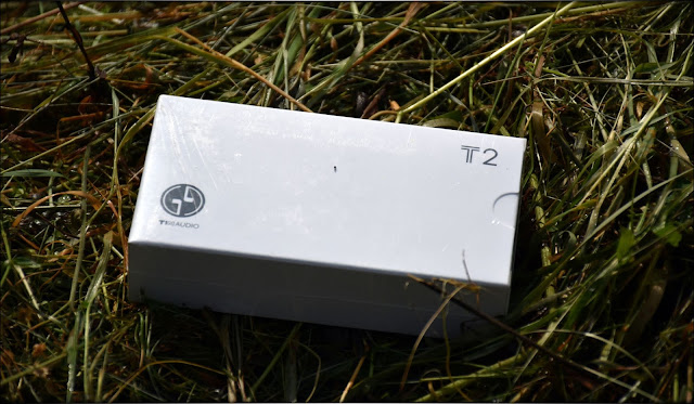 Tin T2 White Package, on a green, lively background