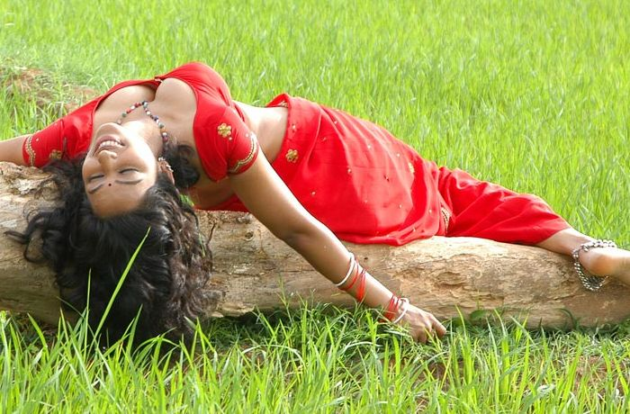 Actress Teertha Hot in Red Saree and Blouse