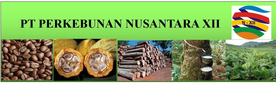 Rekrutmen Kerja PT Perkebunan Nusantara XII (Persero) Tahun 2017