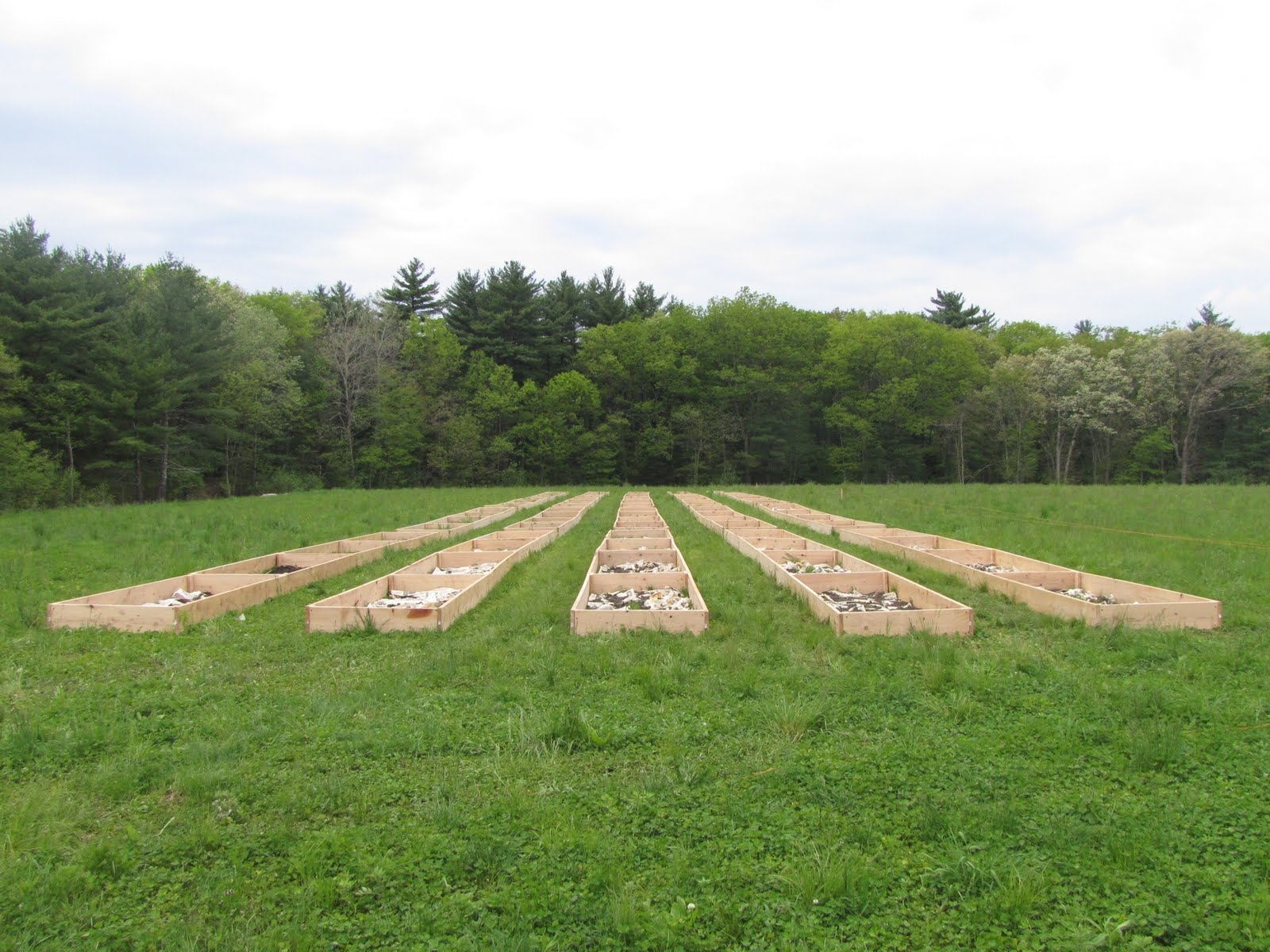 The Farmhouse Needham Circling The Smiling Pond Ridge Hill Reservation And