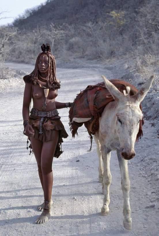 Umhlanga Reed Dance, Swaziland - Acacia Blog