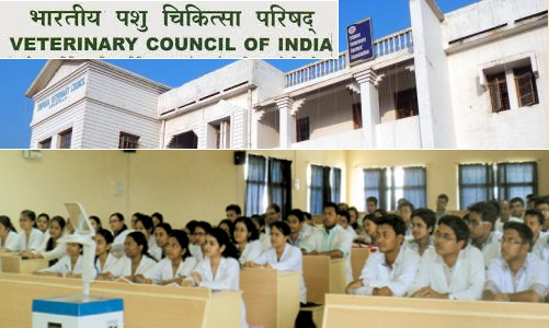 allocation-of-remaining-vacant-seats-to-bvsc-ah-degree-course-under-15-on-paramnews