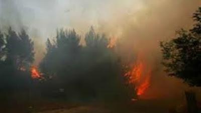 حريق هائل في جزيرة إيفيا اليونانية