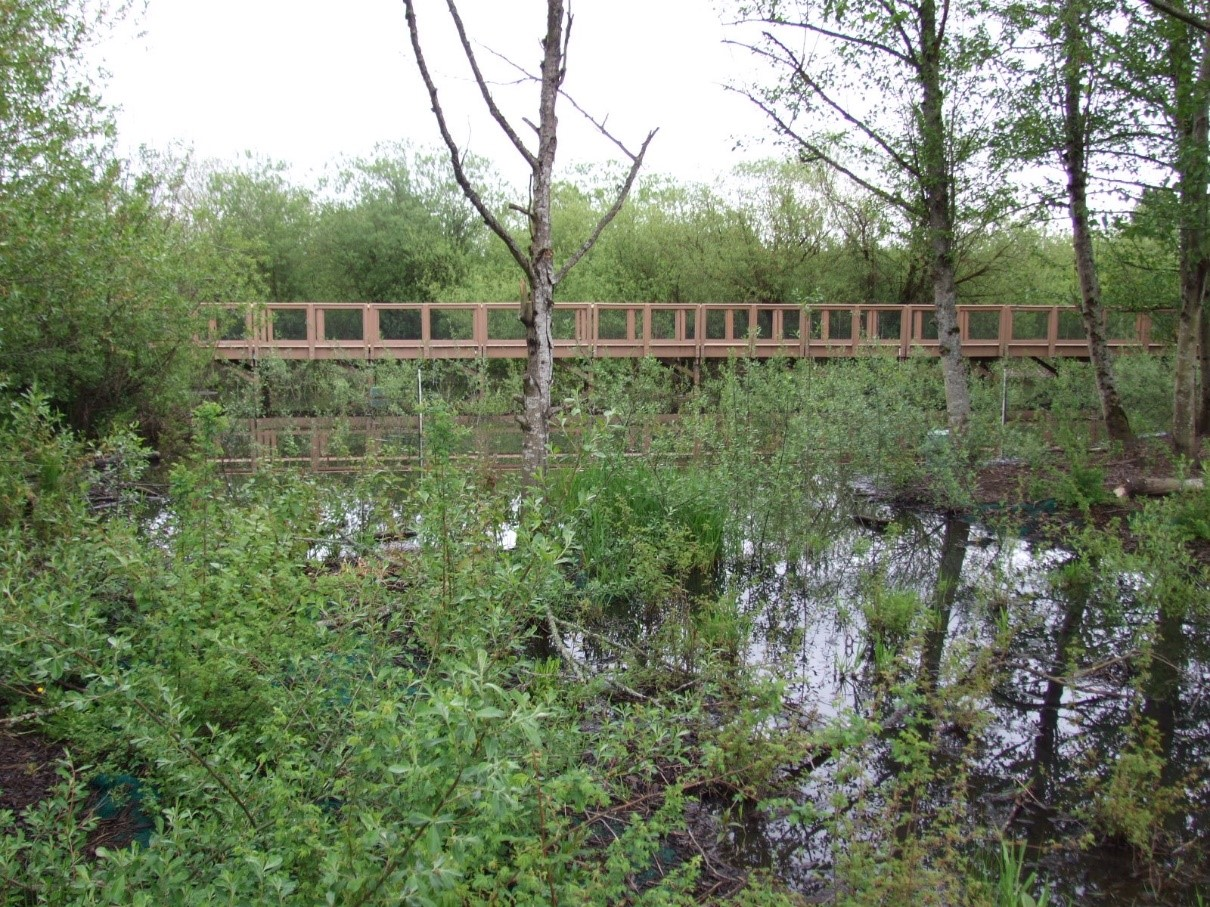 Washington Department Of Ecology Commemorate World Wetlands Day By