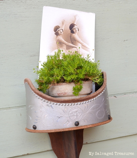 upcycled stereoscope used as a hanging planter and picture holder
