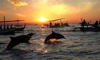 Melihat Atraksi Lumba-Lumba di Pantai Lovina, Bali