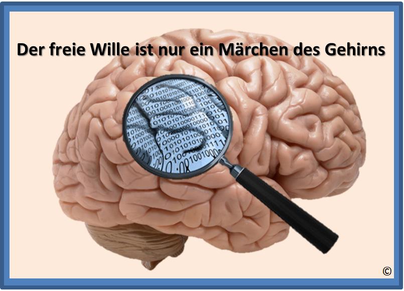 Ist unser 'freier Wille' NUR eine Illusion unseres Gehirns (inkl. 2 Videos)