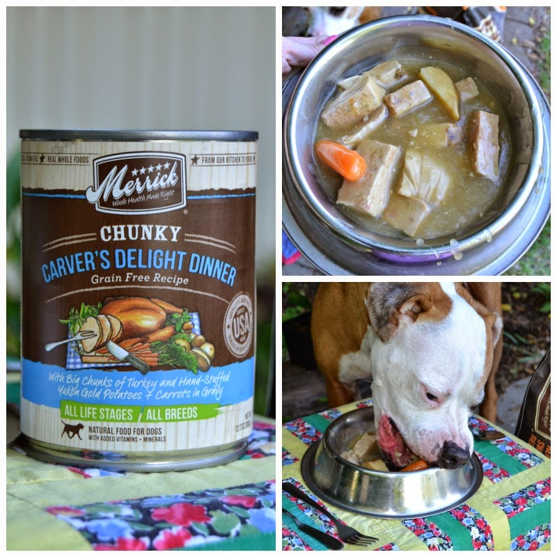 Merrick dog food - enter to win a year's supply