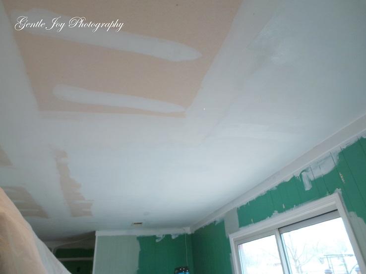Gentle Joy Homemaker Family Room Project Ceiling Design