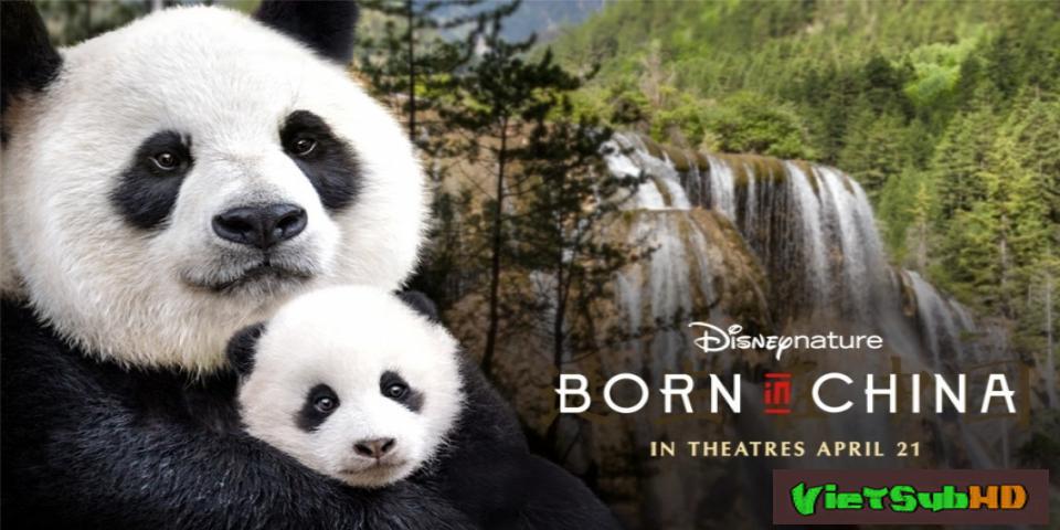 Phim Sinh ra ở Trung Hoa VietSub HD   Born in China 2016