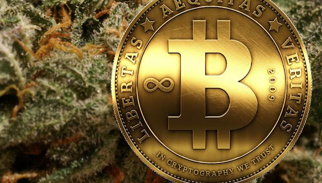 Austrália vai leiloar 16 milhões de dólares australianos em bitcoins