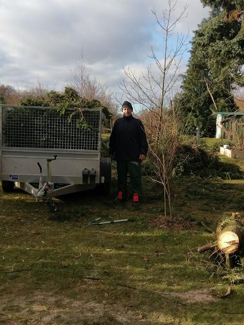 H.B.SERVICE Entsorgung von Gartenabfällen