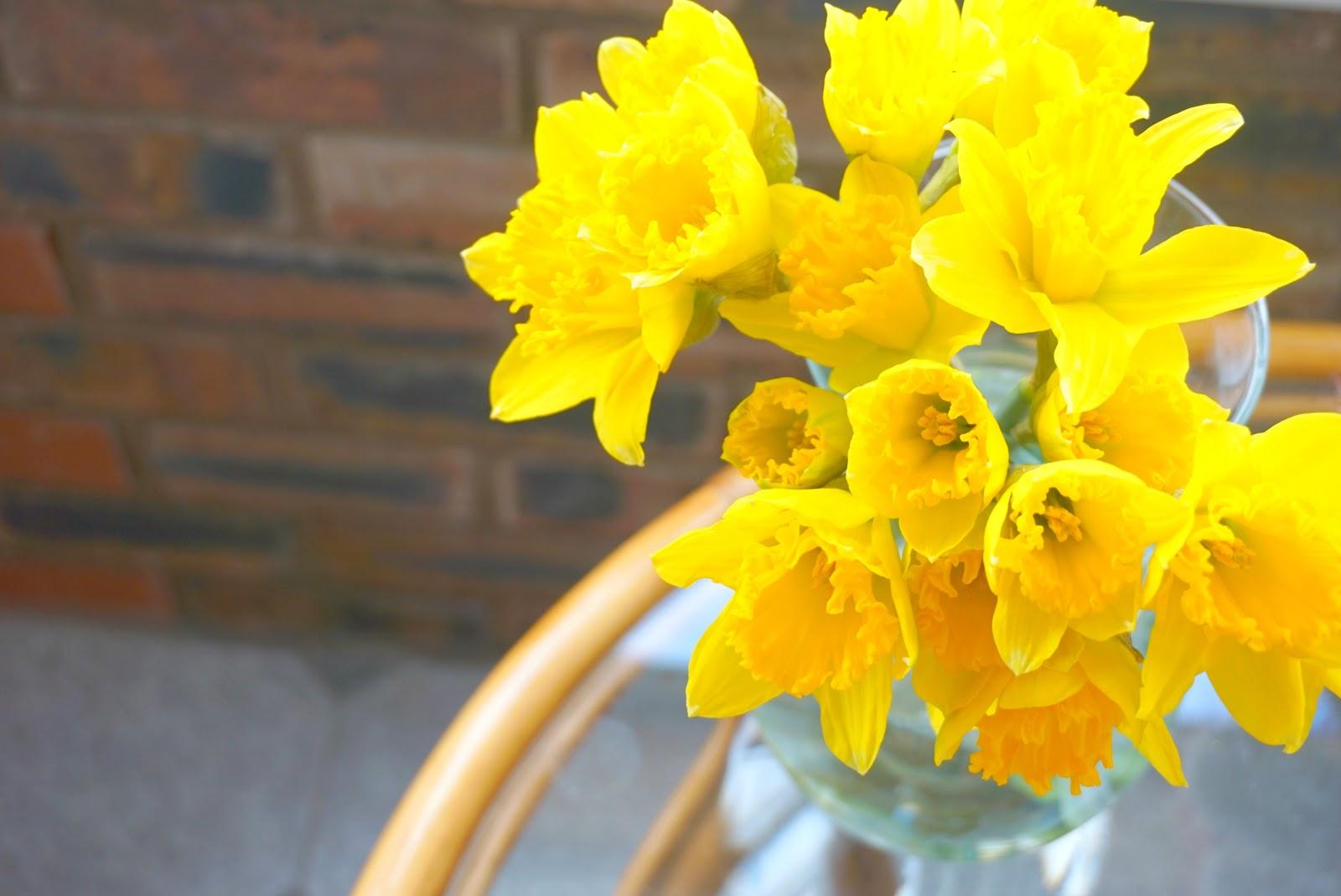 spring blog update
