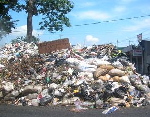 Sampah Organik Dan Anorganik Manfaat Beserta Contohnya