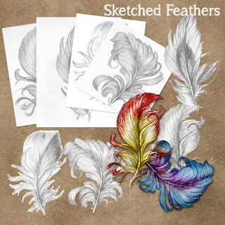 Sketched Feathers