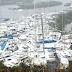 Grand Cayman Island Setelah Musim Badai