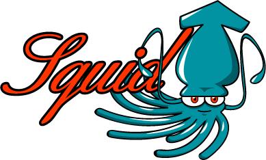Cara mengecek squid proxy aktif/tidaknya Terbaru